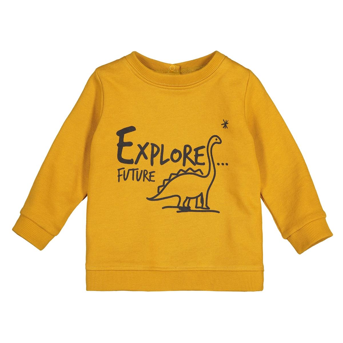 Свитшот La Redoute Из мольтона с принтом динозавр мес- года 1 мес. - 54 см желтый футболка с принтом 1 мес 4 лет