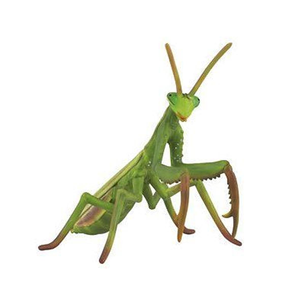 Figurine Insecte : Mante