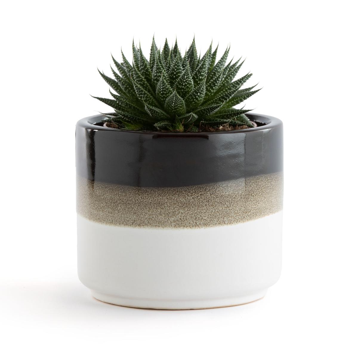 Кашпо La Redoute Из керамики в трехцветную полоску Rysa единый размер белый