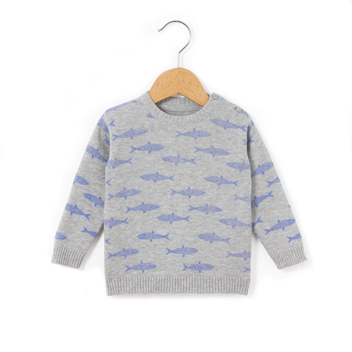 Пуловер с рисунком акулы 1 мес - 3 лет
