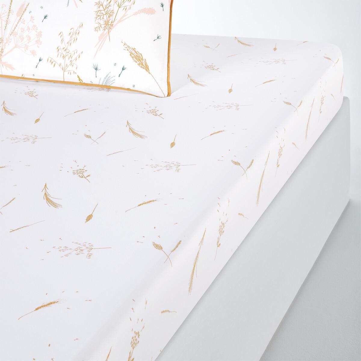 Lençol-capa em algodão, Graminée