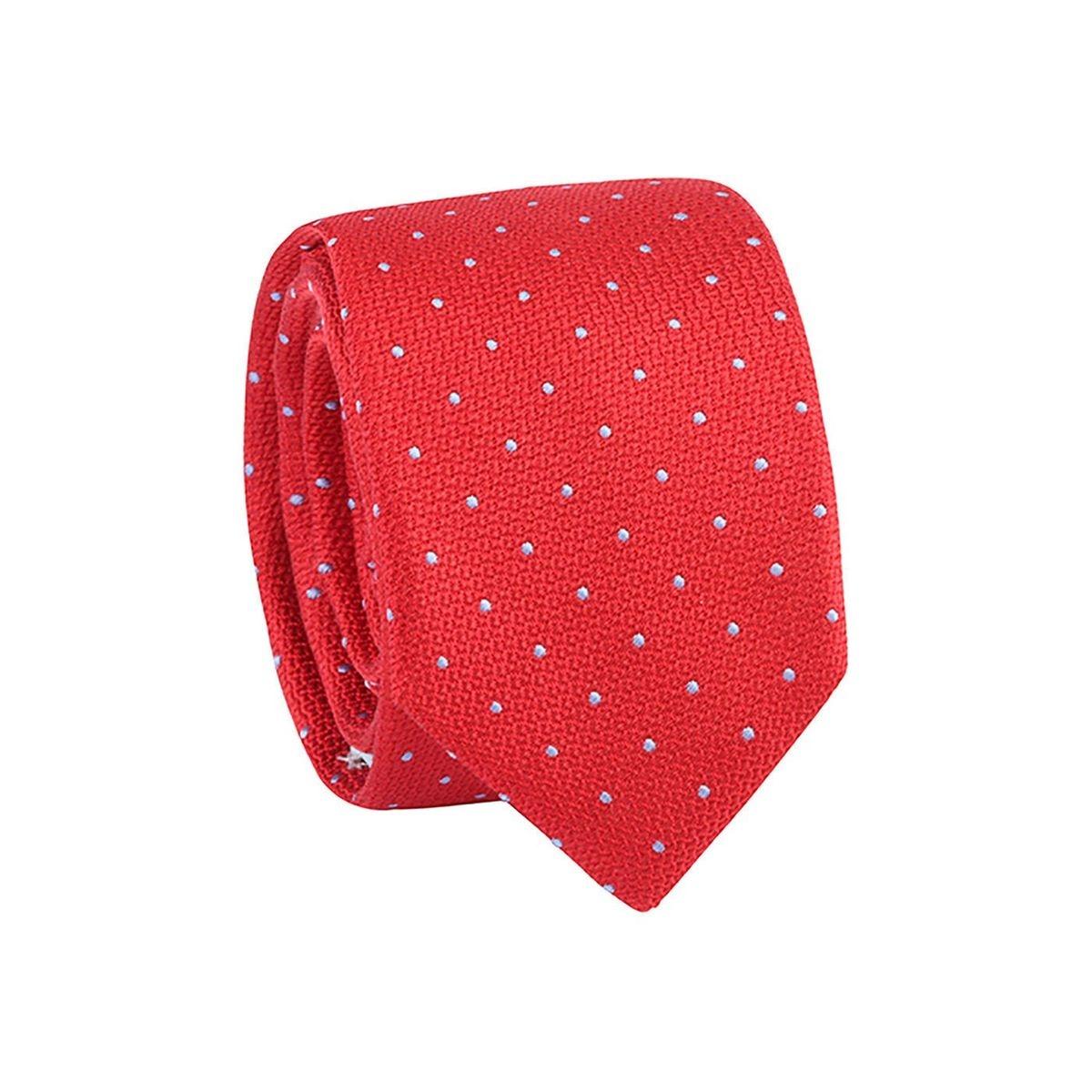 Cravate homme pois Rouge / Bleu ciel