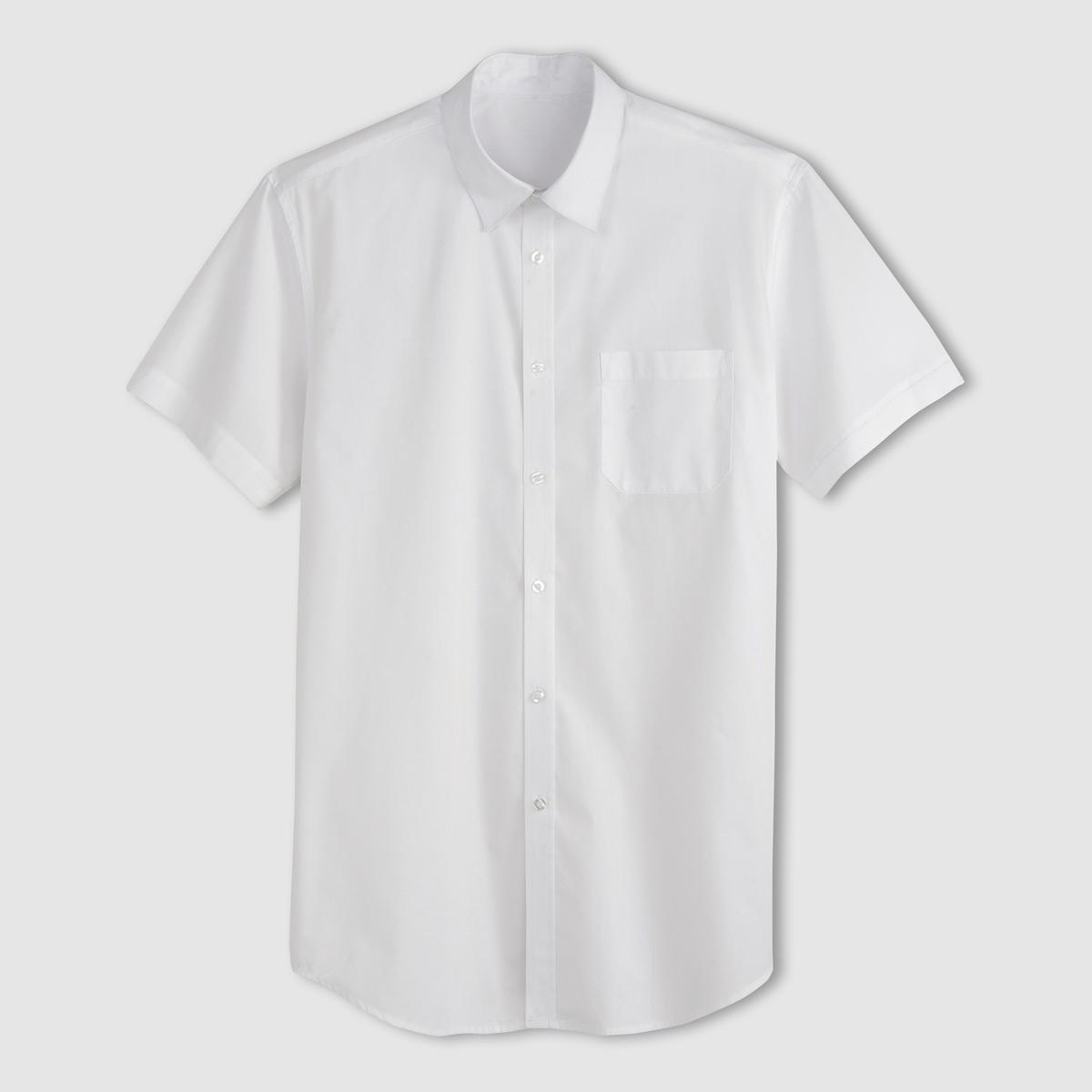 Рубашка из поплина с короткими рукавами, рост 3Рост 3 (при росте от 187 см) :- длина рубашки спереди : 87 см для размера 41/42 и 96 см для размера 59/60.- длина рукавов : 24 см для размера 41/42 и 28,5 см для размера 59/60.Данная модель представлена также для роста 1 и 2 (при росте до 187 см) и с длинными рукавами.<br><br>Цвет: белый,голубой,синий в полоску,темно-синий,черный<br>Размер: 41/42.43/44.51/52.55/56.53/54.41/42.43/44.49/50.53/54.43/44.49/50