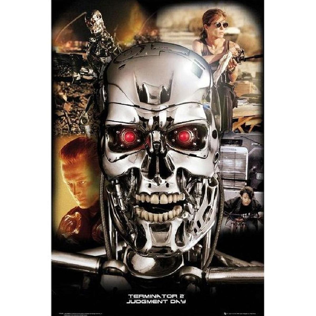 Affiche rectangulaire Terminator