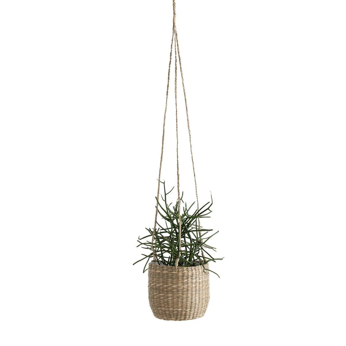 Cachet-pot suspendu en herbier, Mila