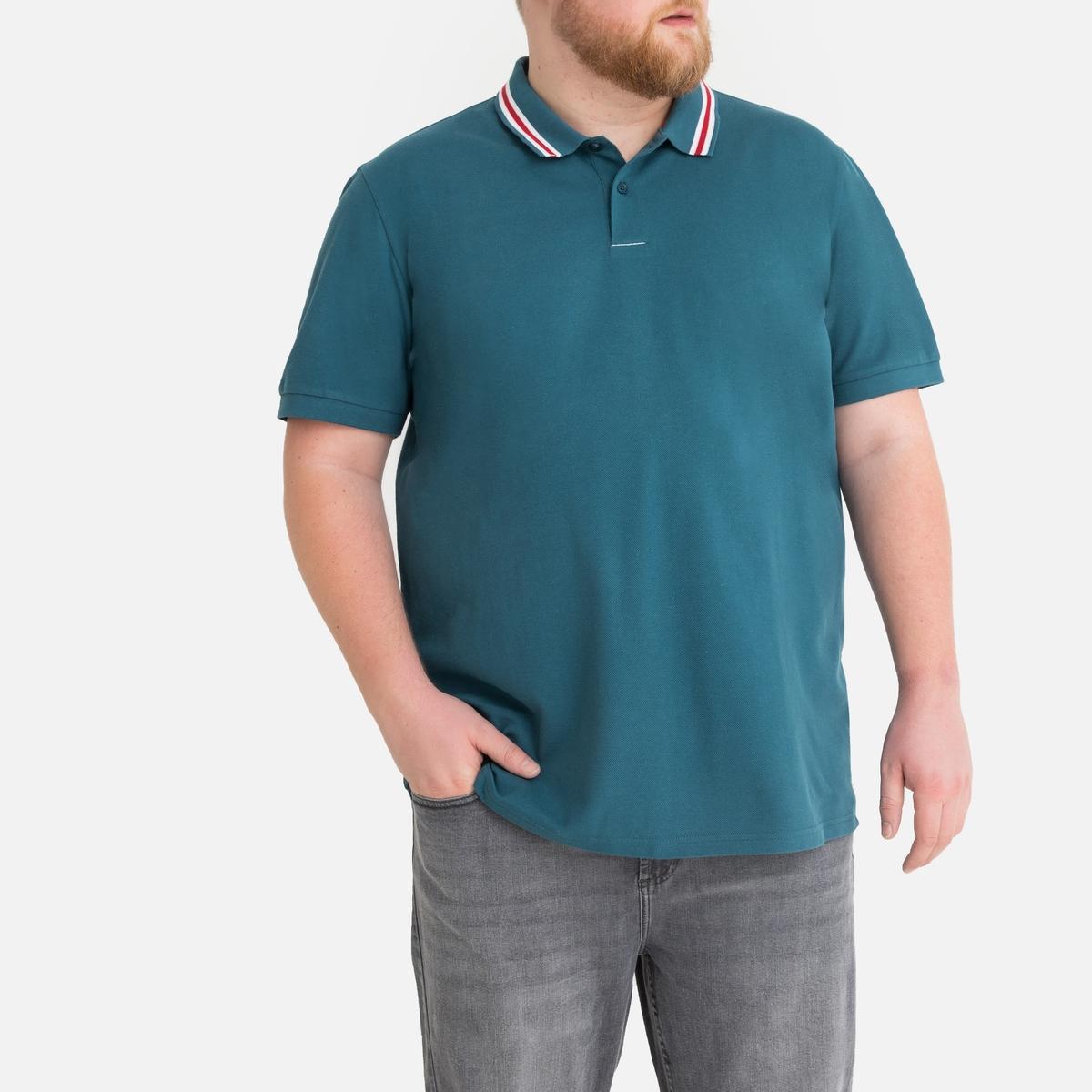 cotton shirt apply pol -