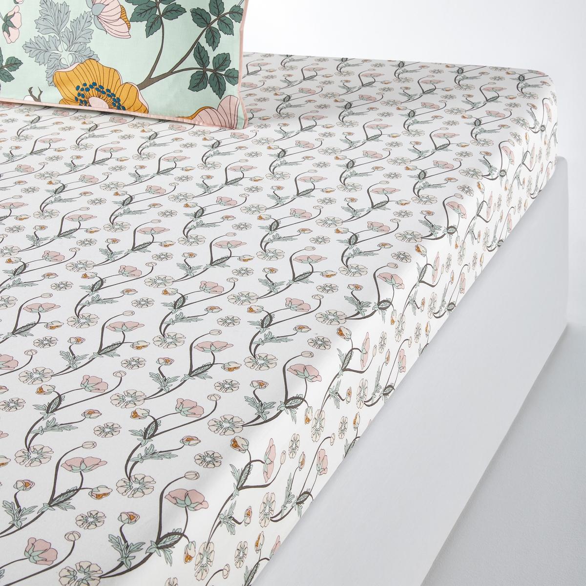 Простыня LaRedoute Натяжная из хлопковой перкали Marthe 90 x 190 см разноцветный недорого