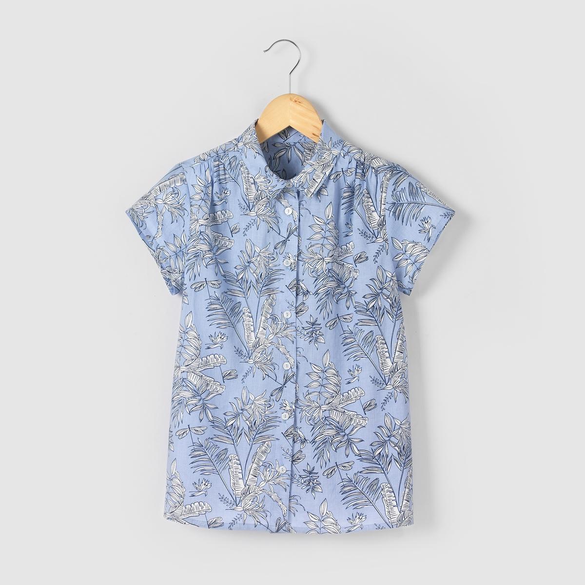 Рубашка с тропическим рисунком, 10-16 летМожно носить с завязкой спереди или без нее. Сборки на плечах. Короткие рукава.    Застежка на пуговицы. Состав и описаниеМатериал       100% хлопкаУХОДСтирать и гладить с изнаночной стороныМашинная стирка при 30°C, с вещами подобных цветовМашинная сушка в умеренном режимеГладить при умеренной температуре.<br><br>Цвет: рисунок тропики<br>Размер: 10 лет - 138 см