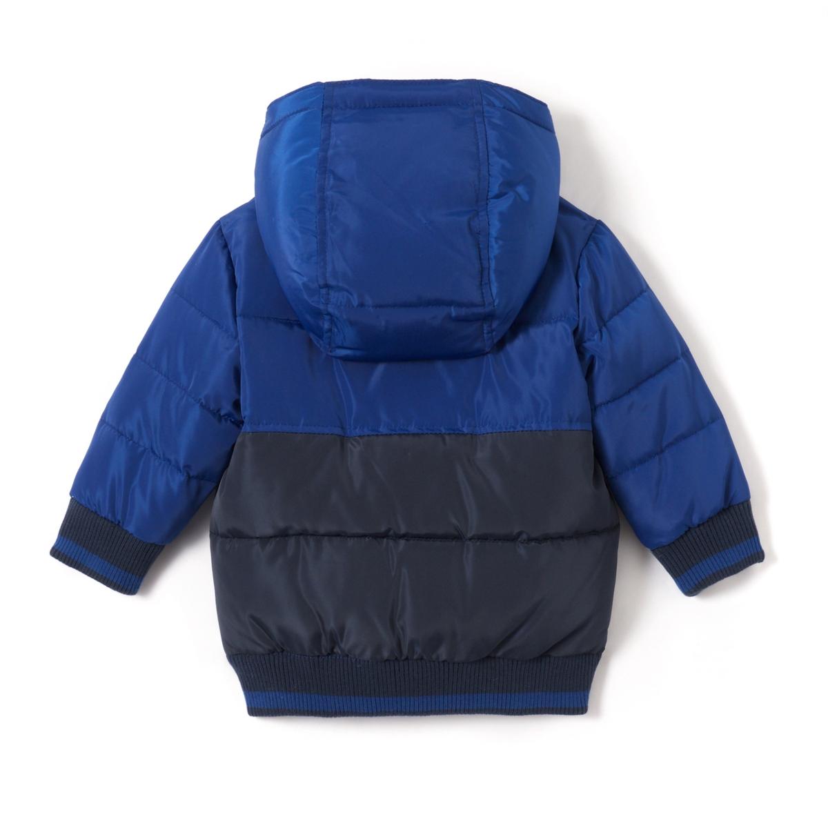 Куртка стеганная двухцветная с капюшоном, 1 мес.- 3 летДетали •  Зимняя модель •  Непромокаемая •  Застежка на молнию •  С капюшоном •  Длина : средняяСостав и уход •  100% полиэстер •  Подкладка : 100% полиэстер •  Наполнитель : 100% полиэстер •  Температура стирки 30° на деликатном режиме •  Сухая чистка и отбеливание запрещены •  Не использовать барабанную сушку •  Не гладить<br><br>Цвет: синий/ серый<br>Размер: 1 мес. - 54 см.3 года - 94 см.18 мес. - 81 см.1 год - 74 см.9 мес. - 71 см.6 мес. - 67 см.3 мес. - 60 см