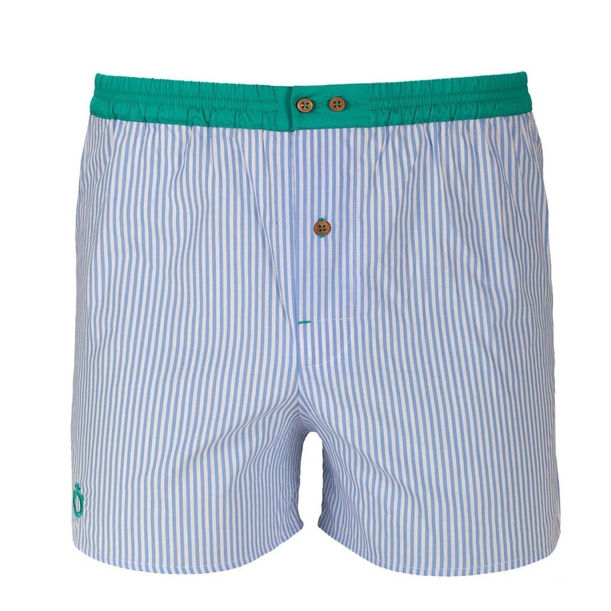Caleçon à rayures bleues avec ceinture verte