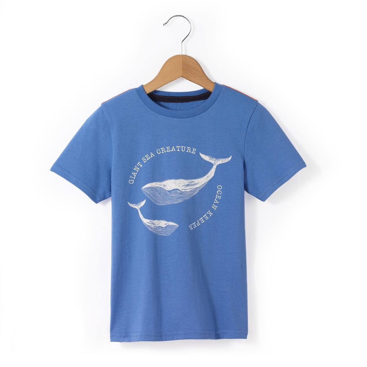 Футболка с рисунком киты, 3-12 лет