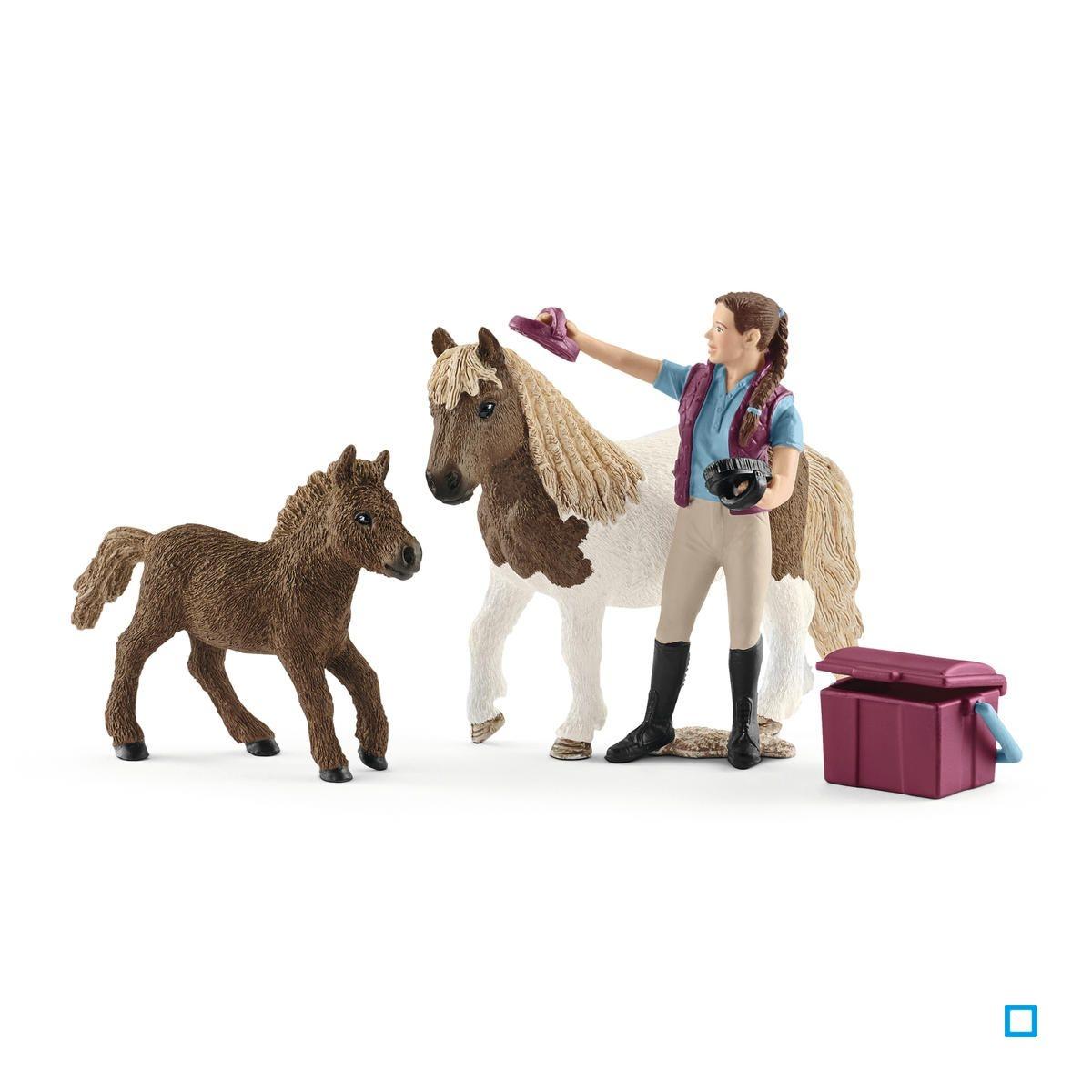Soigneuse de chevaux avec poneys Shetland - SCL42362