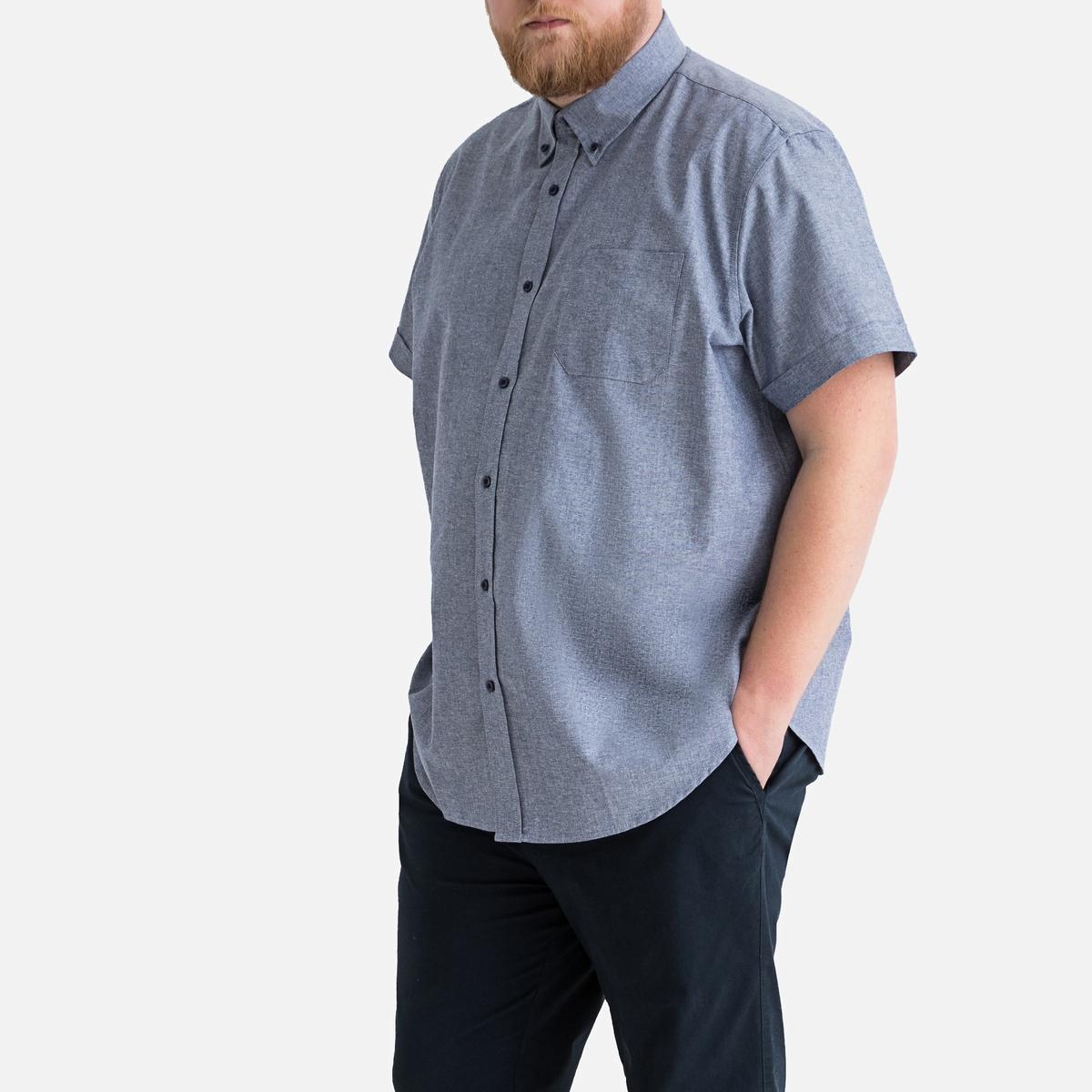 Camisa direita, tamanho grande