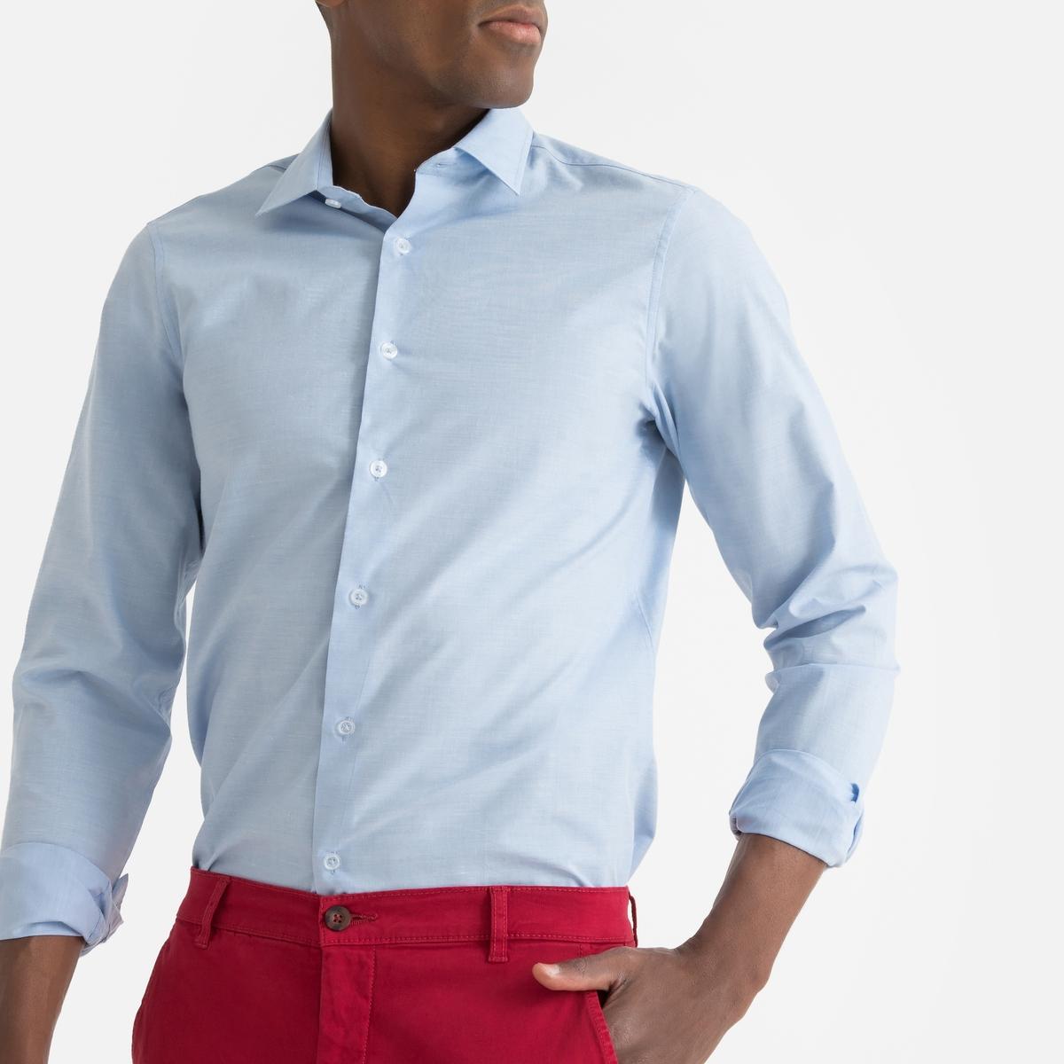 Camisa direita, mangas compridas