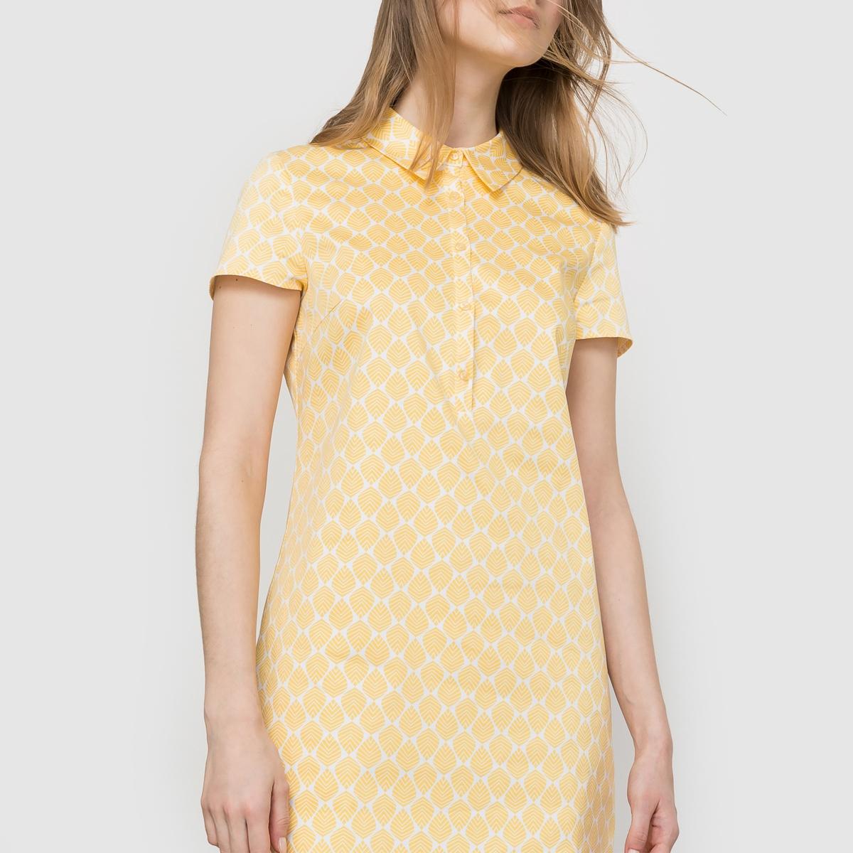 Платье-рубашка с короткими рукавамиПлатье-рубашка с короткими рукавами . Прямой покрой . Небольшой рубашечный воротник. Длина 90 см .Состав и детали : Материал : хлопковый атлас 98% хлопка, 2% эластана Марка : LES PETITS PRIX.Уход :Стирка : при 30° с изнанки Глажка : с изнаночной стороны<br><br>Цвет: набивной рисунок<br>Размер: 46 (FR) - 52 (RUS)