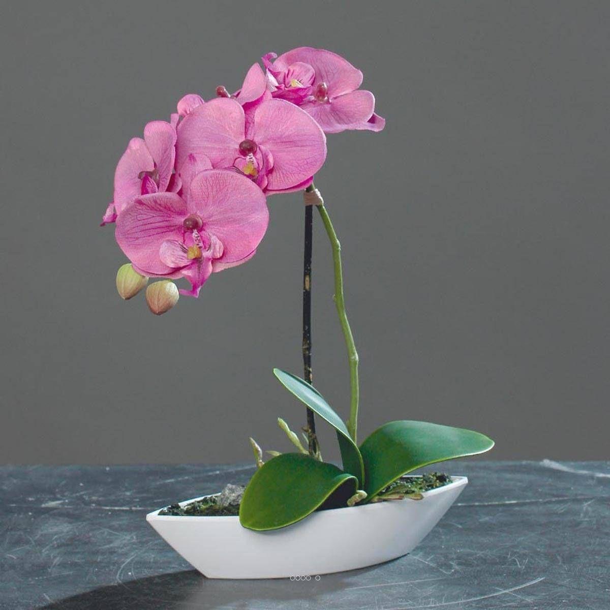 Orchidée artificielle tissu gaufré 1 hampe pot Résine Blanc ovale H 38 cm Rose-crème - couleur: Rose-crème