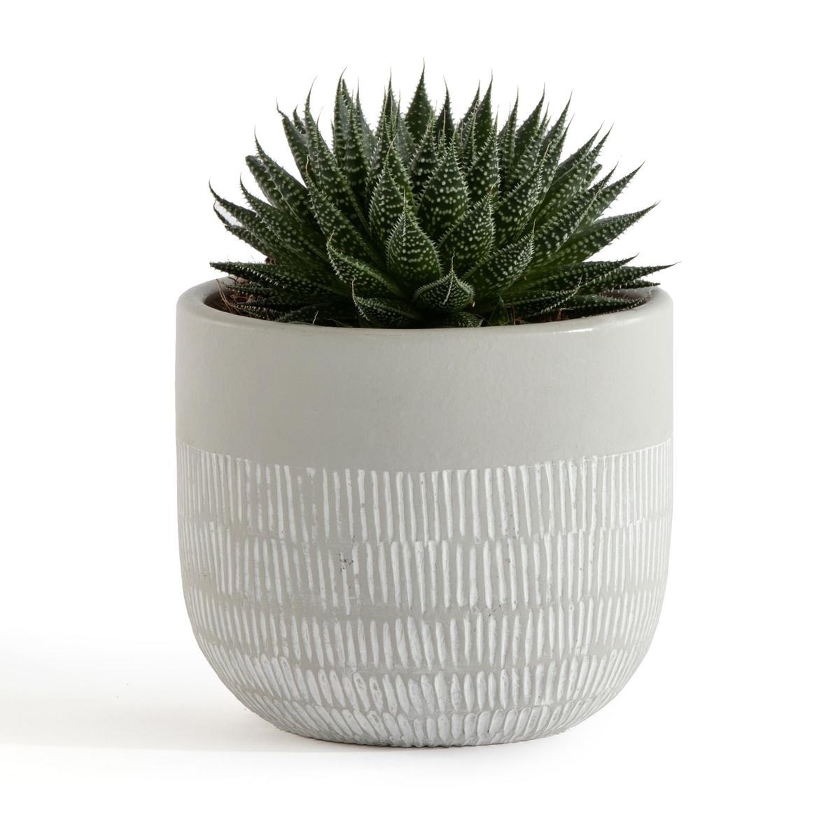 кашпо для растений roto alibunar planter tango цвет серый Кашпо LaRedoute Из керамики Liso единый размер серый