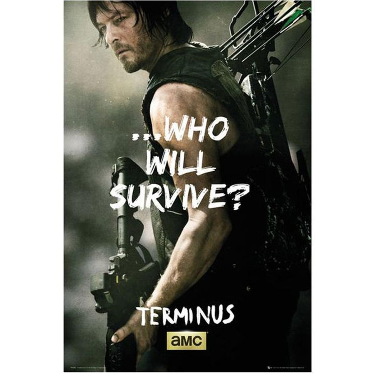 Affiche Daryl Walking Dead