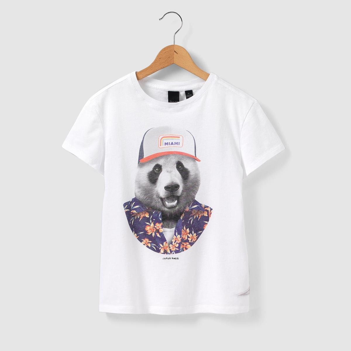 T-shirt com estampado urso 8 - 16 anos