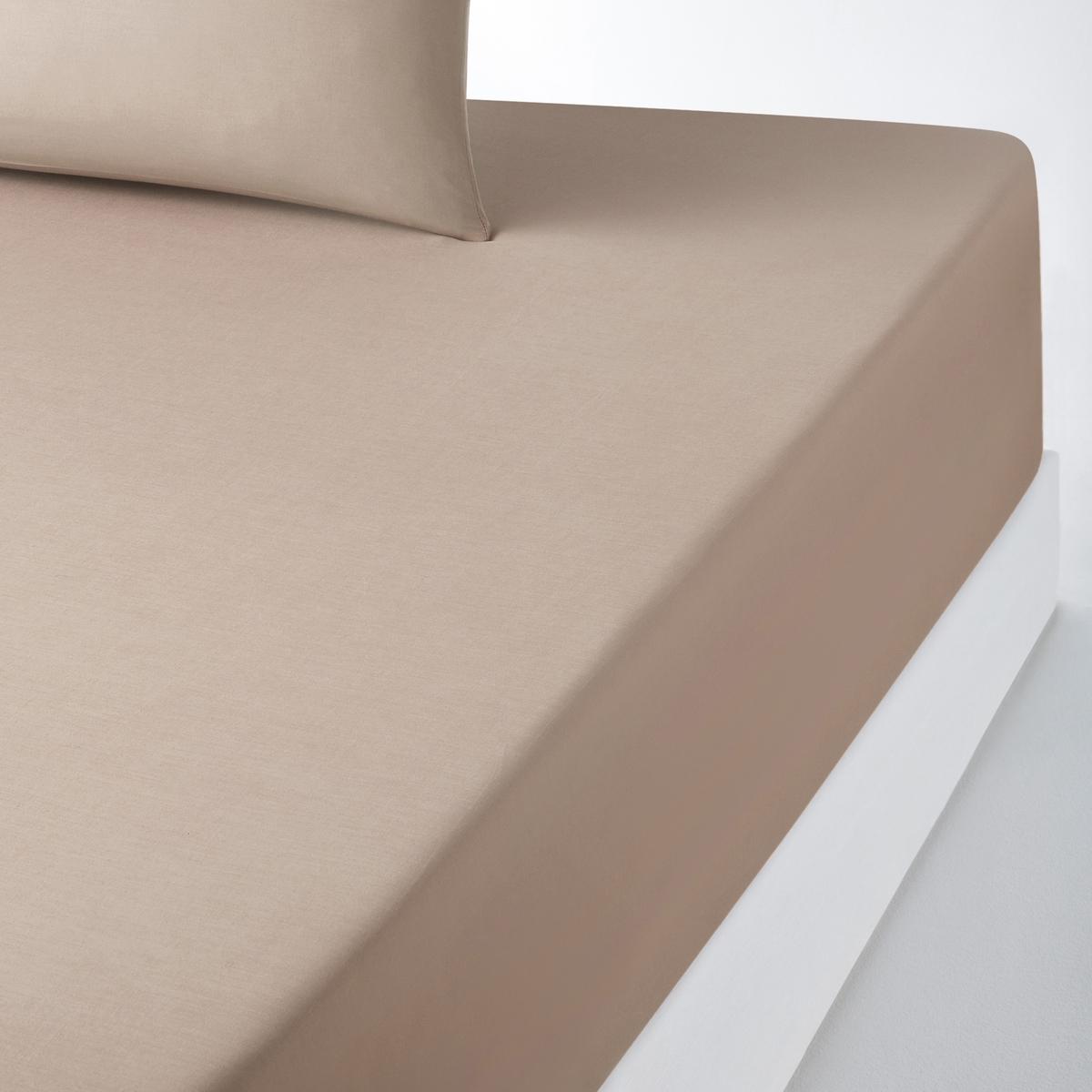 Натяжная простыня, 100% хлопокСтильная гамма цветов позволяет создаваять яркие комплекты SCENARIO.    57 нитей/см? : чем больше нитей/см?, тем выше качество ткани.Характеристики хлопчатобумажной натяжной простыни для толстого матраса:- Натяжная простыня из 100% хлопка плотного плетения (57 нитей/см? : чем больше количество нитей/см?, тем выше качество ткани), очень мягкая и удобная. - Специально разработана для толстых матрасов до 30 см (клапан 32 см).- Прекрасно сохраняет цвет после стирок (60°).Знак Oeko-Tex® гарантирует, что товары протестированы, сертифицированы и не содержат вредных для здоровья веществ. Натяжная простыня  :90 x 190 см : 1-спальный.140 x 190 см : 2-спальный.140 x 200 см : 2-спальный.160 x 200 см : 2-спальный.2 p : 2-спальный.Найдите другие предметы постельного белья SC?NARIO на нашем сайте<br><br>Цвет: антрацит,бледный сине-зеленый,вишневый,голубой бирюзовый,желтый лимонный,нежно-розовый,розовое дерево,розовый коралловый,серо-коричневый каштан,серый жемчужный,фиолетовый,черный