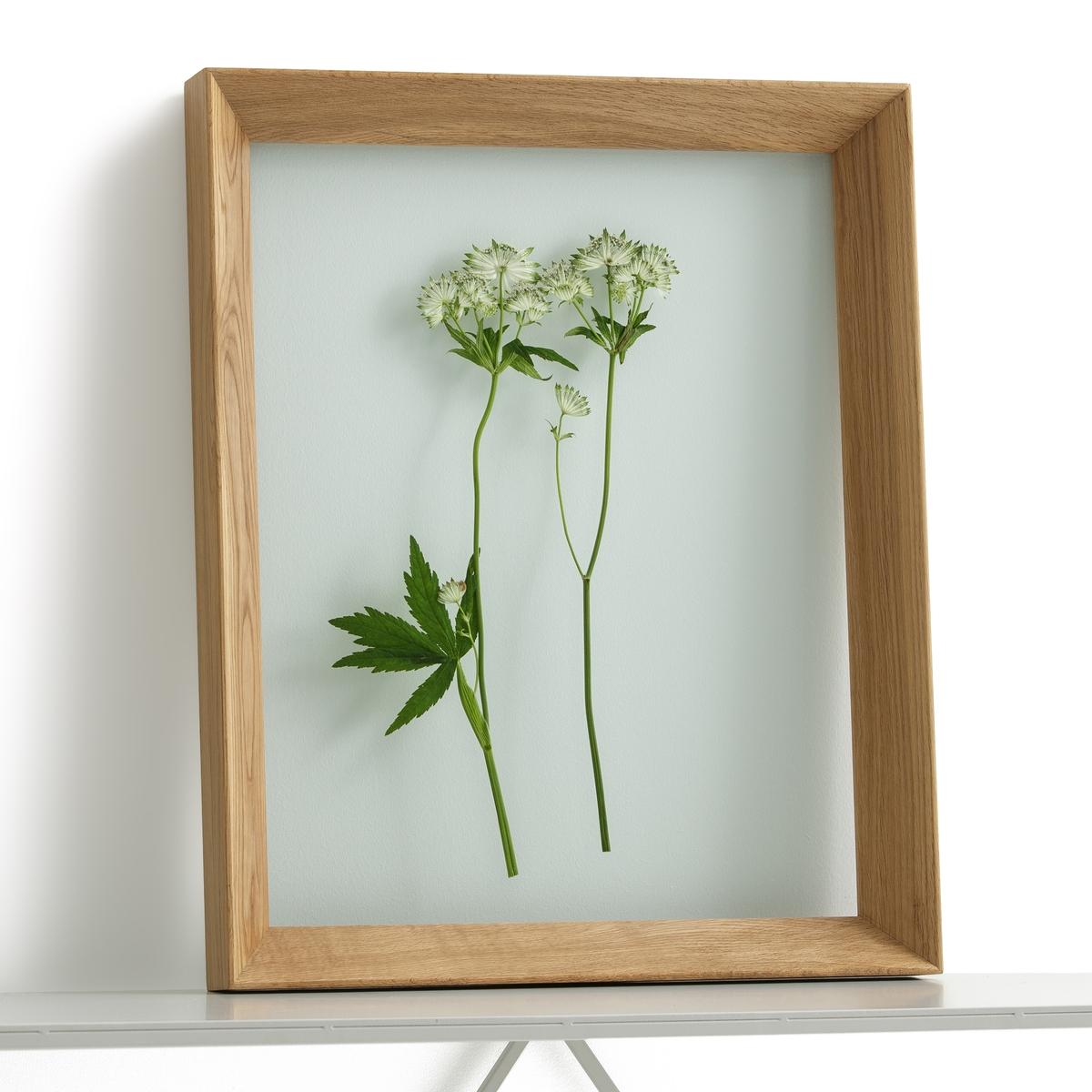 Рамка с двойным стеклом Ш40 x В50 см, MoriceyРамка Moricey. Элегантная рамка со скошенными краями идеальна для размещения фотографий, плакатов или репродукций. Фон рамки из прозрачного стекла позволяет размещение фотографий без использования паспарту, что делает её более легкой.Описание : - Двойное стекло- Рамка из массива дуба или из массива орехового дерева- Пластины сзади для настенного крепления (болты и дюбели в комплект не входят)Размеры : - Ш40 x В50 x Г5,6 см<br><br>Цвет: дуб,ореховый