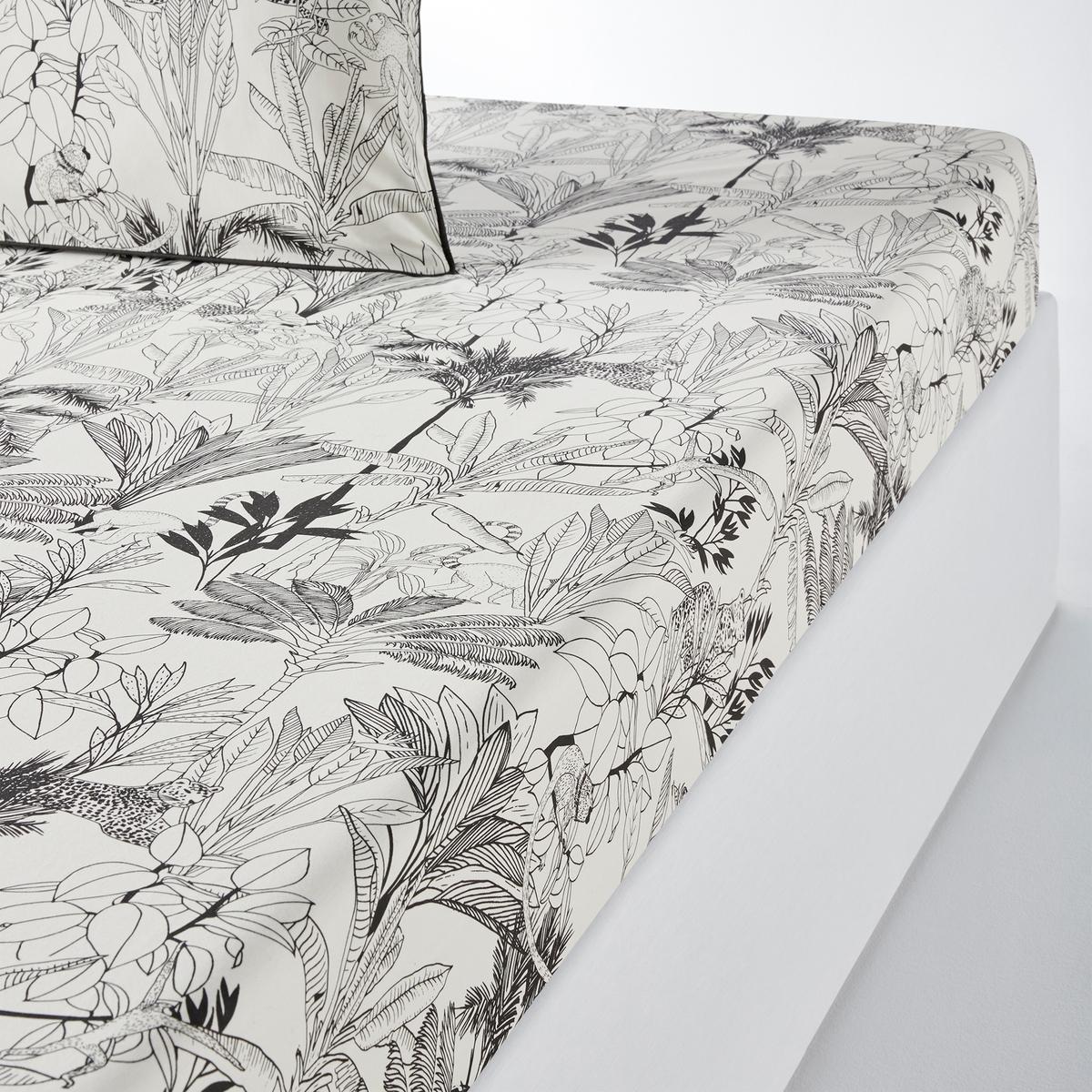 Простыня LaRedoute Натяжная из хлопковой перкали Palmeira 140 x 200 см другие недорого