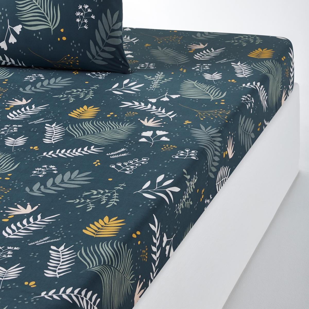 Простыня LaRedoute Натяжная из хлопковой перкали Suzanne 140 x 190 см синий недорого