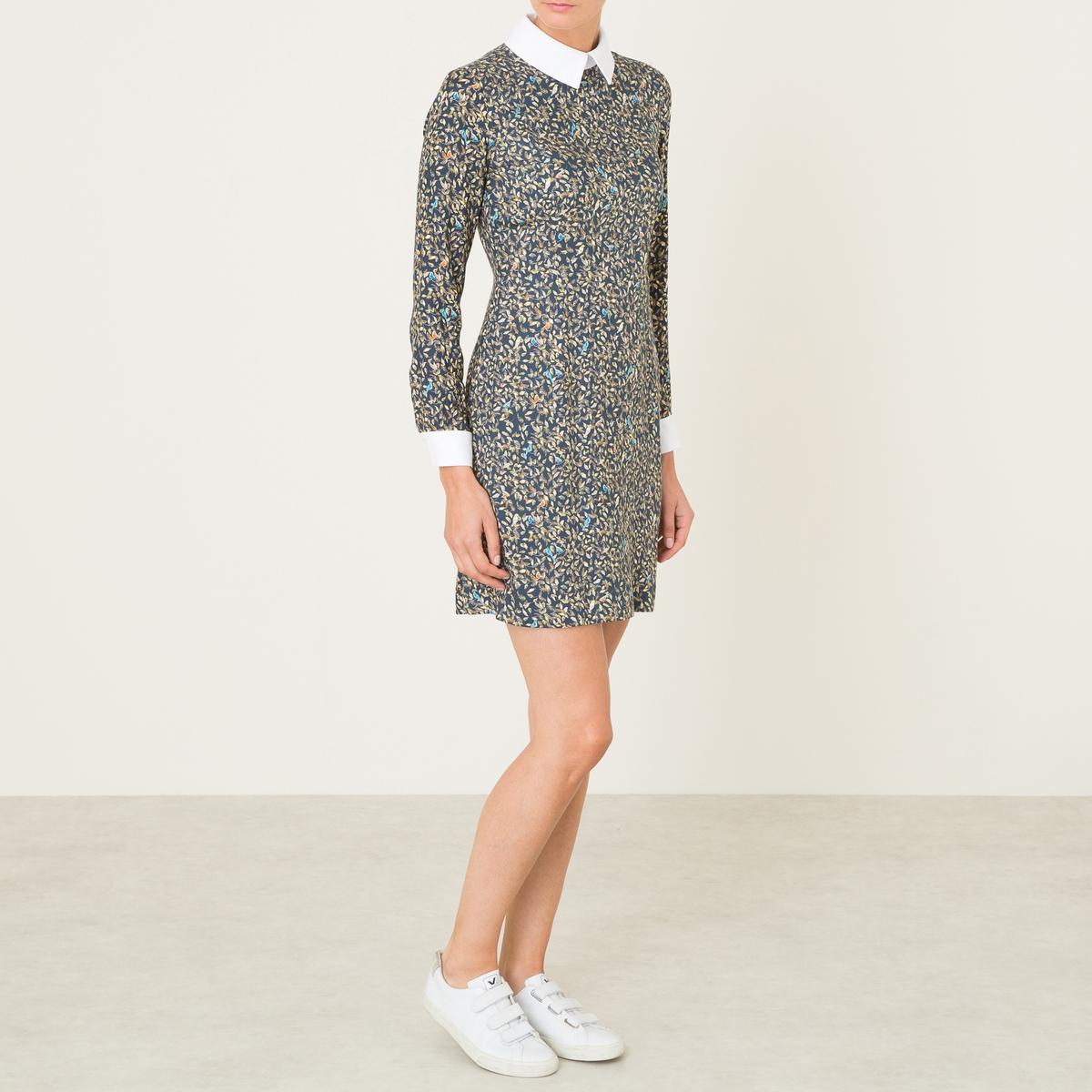 Платье SELHIBOUX EXCLUSIVITE BRAND BOUTIQUE helen williams paul and virginia