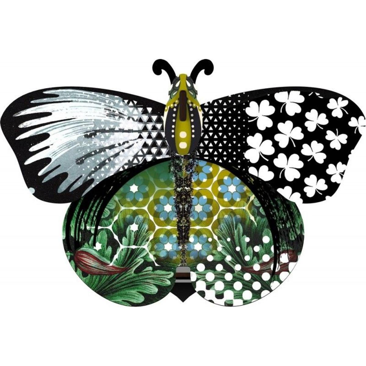 Papillon miroir  Unexpected Things Aida