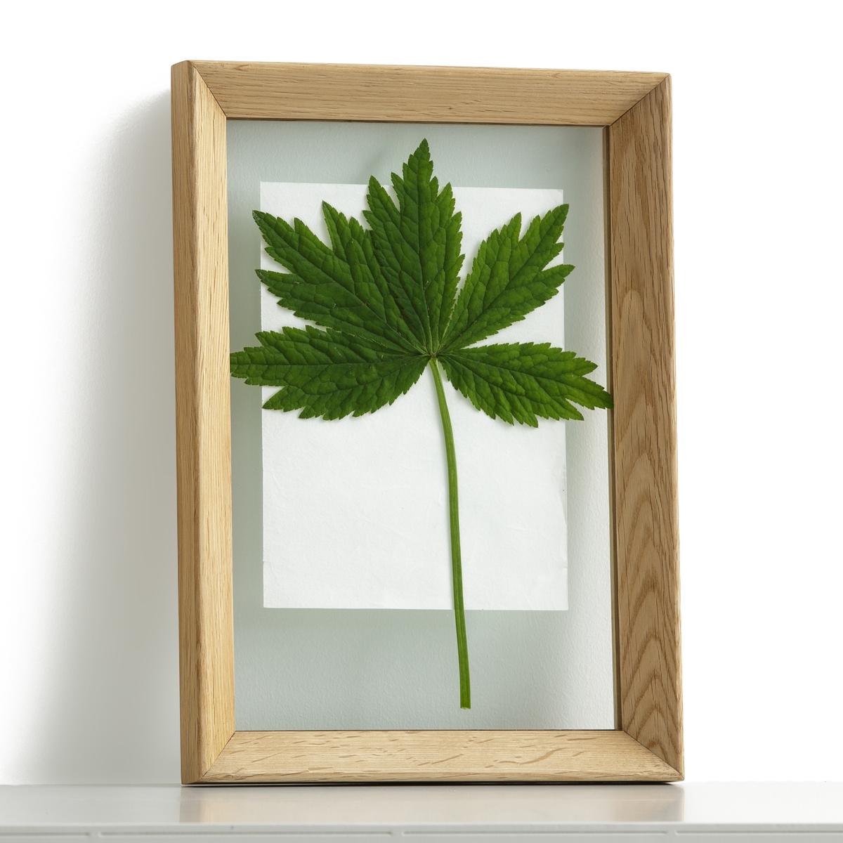Рамка из двойного стекла L25xH35 см, MoriceyРамка Moricey. Элегантная рамка со скошенными краями идеальна для размещения фотографий, плакатов или репродукций. Фон рамки из прозрачного стекла позволяет размещение фотографий без использования паспарту, что делает её более легкой.Характеристики : - Двойная перегородка из стекла- Рамка из массива дуба - Пластины сзади для настенного крепления (болты и дюбели в комплект не входят)Размеры : - L25 x H35 x P5,6 см<br><br>Цвет: дуб