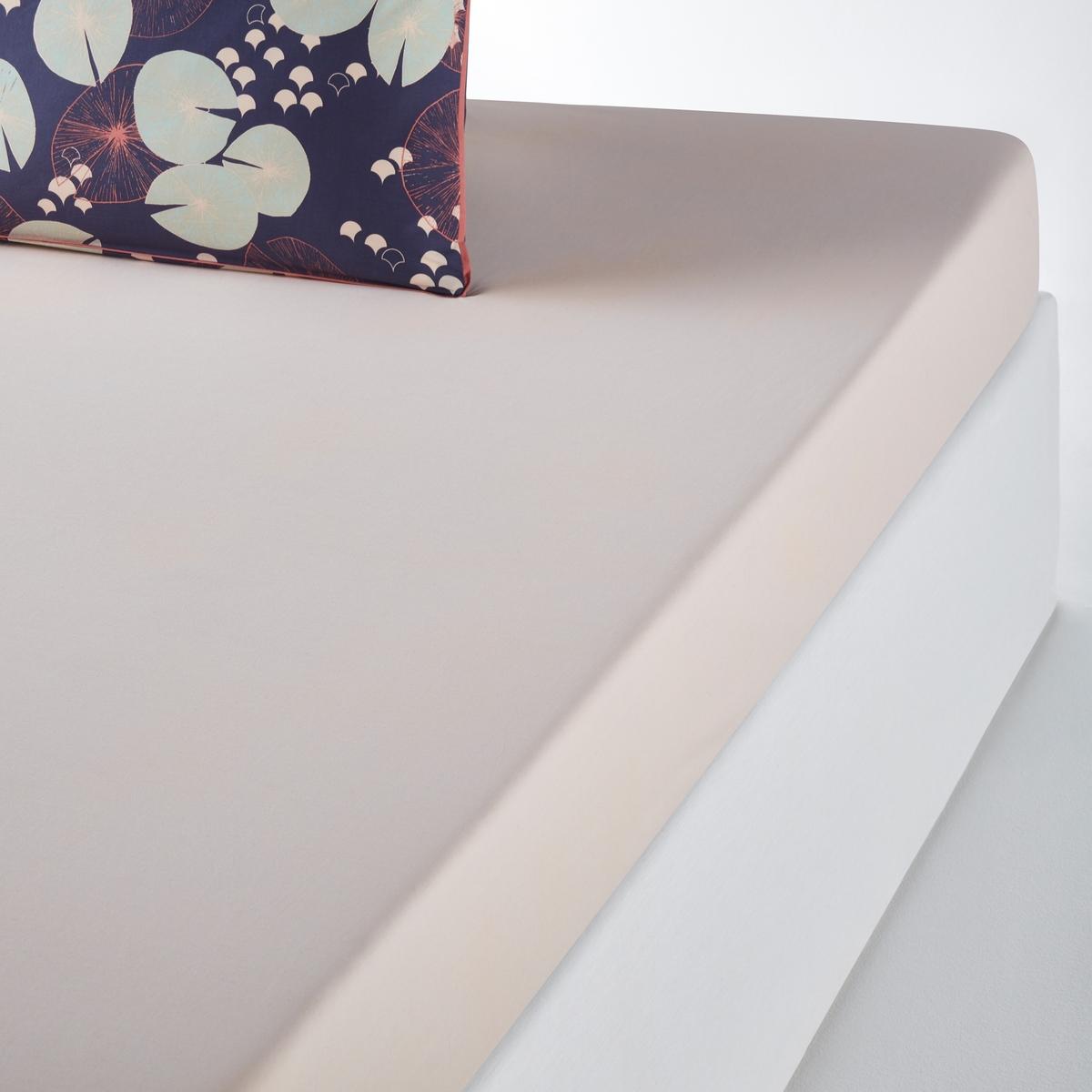Lençol-capa, percal de algodão, JARDIN D'EAU