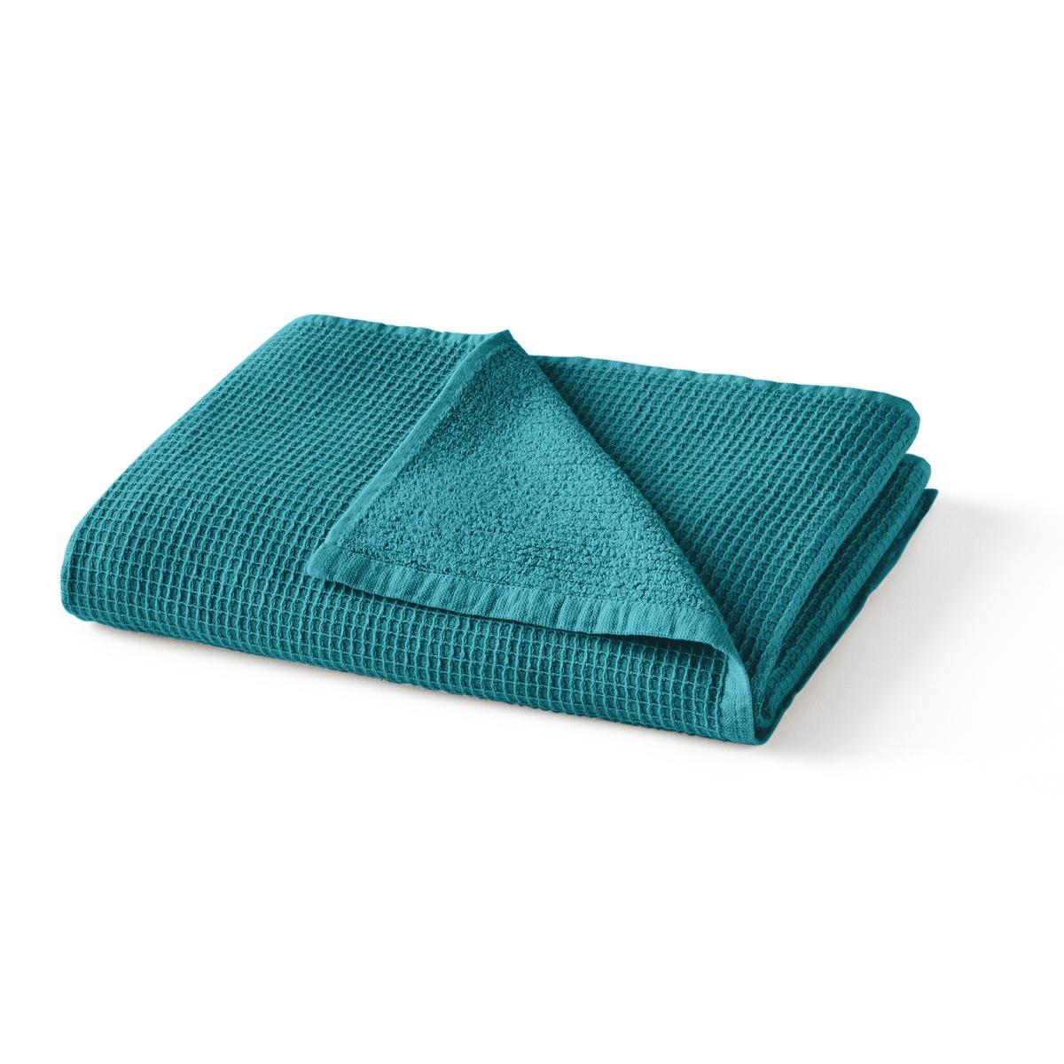 Полотенце La Redoute Махровое из вафельной ткани Timeo 50 x 100 см синий комплект из полотенце для la redoute рук из хлопка и льна nipaly 50 x 100 см белый