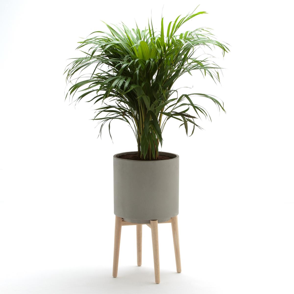 Кашпо Выс.58,5 см, FlorianДекоративное кашпо из цемента на складной деревянной подставке. Идеален для украшения ваших растений.Характеристики : - Из цементаПодставка из гельвеи    Размеры  : - ?34 x 58,5 см- Горшок: ?31 x 30,5 см<br><br>Цвет: серый цементовый