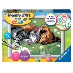 Peinture au numéro : Numéro d'Art lignes colorées : Comme chien et chat RAVENSBURGER