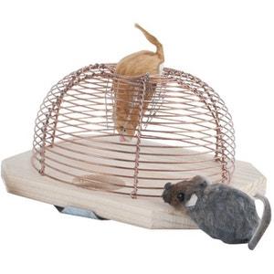 Piège à souris vivantes BURSTENHAUS REDECKER