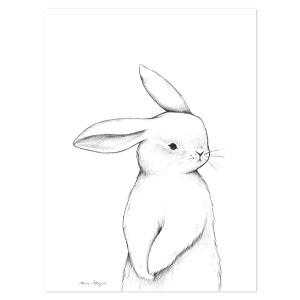 Affiche bébé lapin de face LILIPINSO