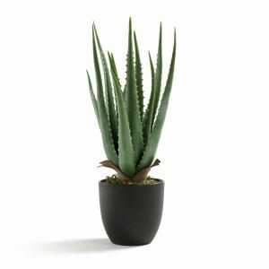 Plante aloe vera artificielle H40 cm, Canary AM.PM