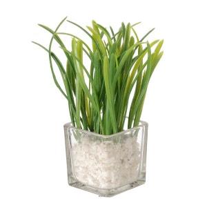 herbes artificielles la redoute. Black Bedroom Furniture Sets. Home Design Ideas