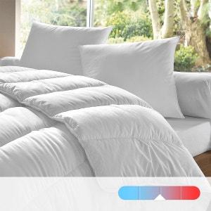 Edredon 100% poliéster, 300 g/m², qualidade standard DODO