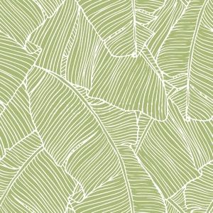 Papier Peint Design Bananier ATYLIA
