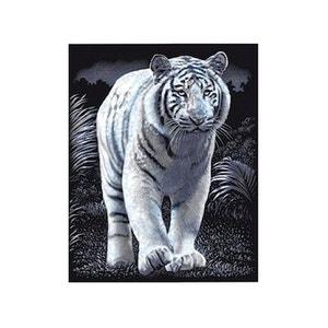 Carte à gratter Tigre LEFRANC BOURGEOIS