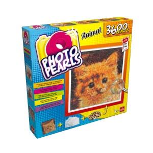 Kit Photo Pearls : Chat GOLIATH