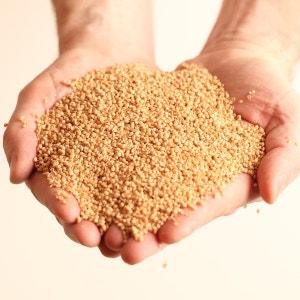 Oreiller de millet MILLE OREILLERS AM.PM.