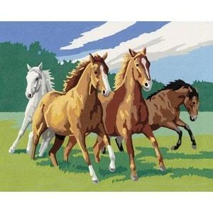 Peinture au numéro Classic : Chevauchée endiablée Version allemande RAVENSBURGER