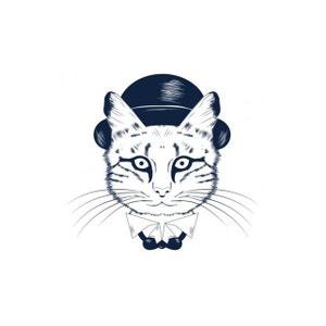 Tableau Animal Chat Avec Chapeau 80X80 DECLIKDECO