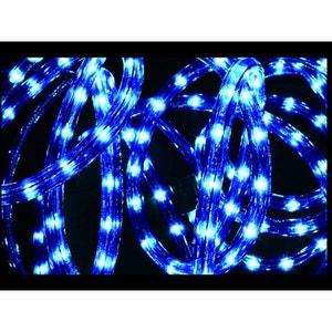 Guirlande lumineuse extérieur Tube LED 8 Fonctions 10 m Bleu FEERIE LIGHTS