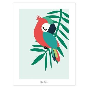 Affiche bébé perroquet LILIPINSO