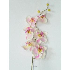 Orchidee Phalaenopsis Artificiel Zen H 77 cm 6 fleurons magnifiques Rose-crème - couleur: Rose-crème ARTIFICIELLES
