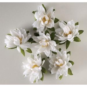 Tetes de Lotus X6 Blanc Neige en sachet D 7 50 cm - choisissez votre coloris: Blanc neige ARTIF-DECO