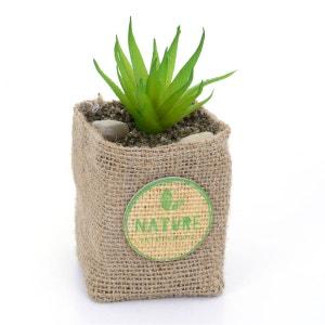 Plante artificielle - Hauteur 12,5 cm - Feuilles allongées et pointues ATMOSPHERA
